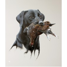 Labrador & Grouse