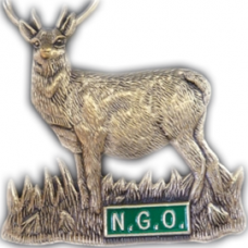Gold coloured stag badge - OUT OF STOCK